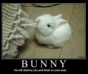 evil.bunny_